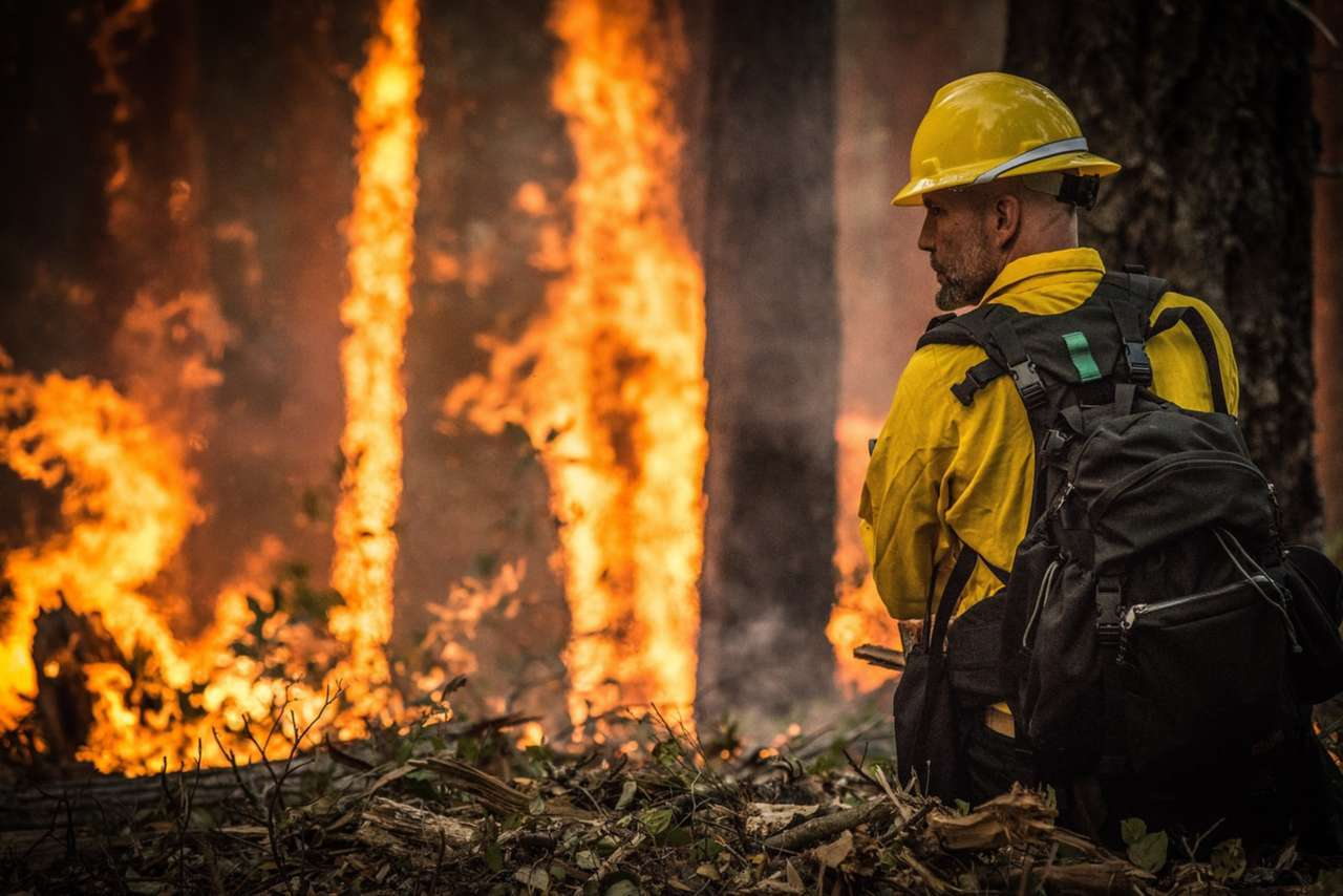 "Ron Howard Is ""Rebuilding Paradise"" In New National Geographic Documentary Following California Wildfires"