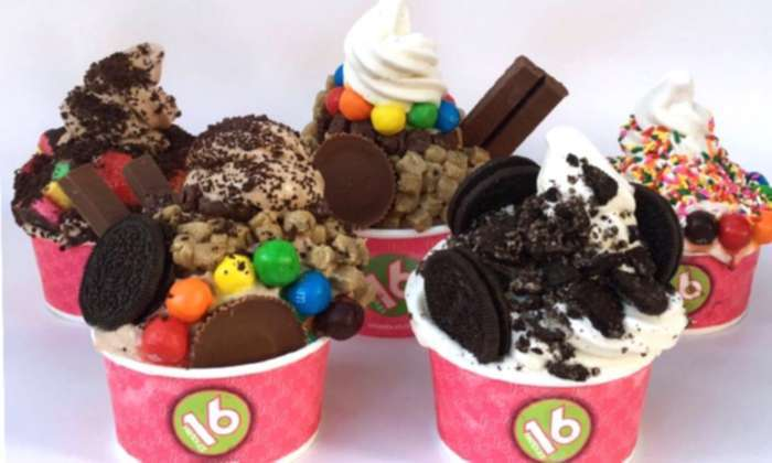 Vegan Frozen Yogurt Is Now Available At 16 Handles