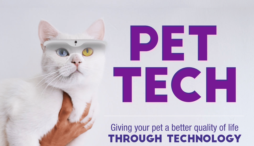 How Technology Is Making Our Pets' Lives Better