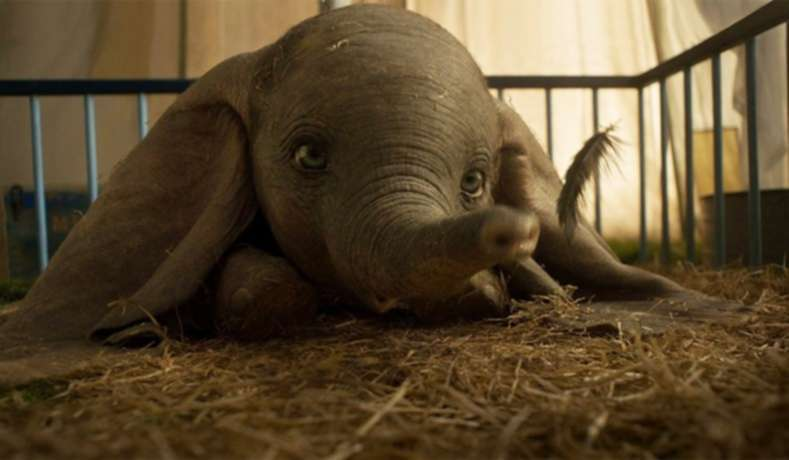 Why Did Disney's Live Action Dumbo Fail?