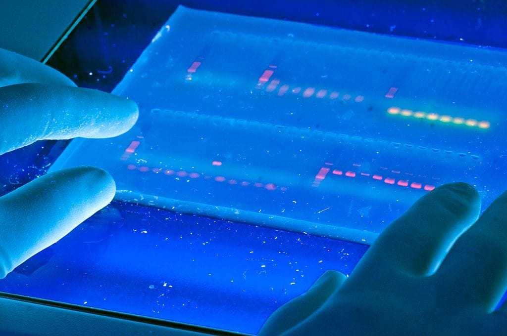 23andMe DNA Testing