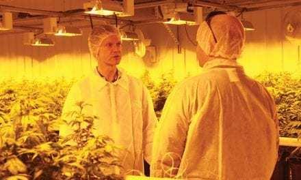 Cam Battley Discusses Aurora Cannabis' Current and Future Goals