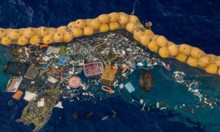 The Great Pacific Garbage Patch Is Finally Being Cleaned Up