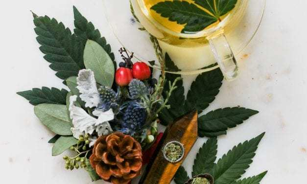 """A """"budding"""" environment sprouts the latest crop of cannabis startups"""