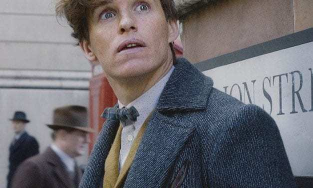 """""""Fantastic Beasts 3"""" Will Move Forward With Production"""