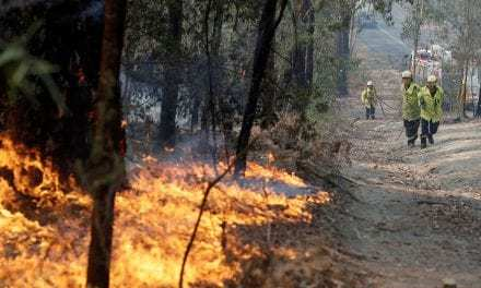 What's Actually Causing The Australian Wildfires