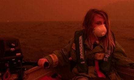 500 Million Estimated Animals Dead in Australia's Wildfires
