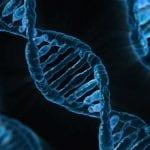 3 Reasons to Try a DNA Testing Kit