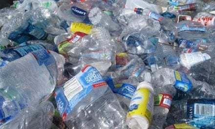Startups Raise Record Sums To Take On Packaging Waste