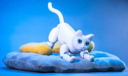 Remember Jimmy Neutron and His Robotic Dog? Meet 'MarsCat,' CES 2020's Most Adorable Robot Kitty.