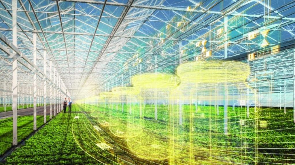 How We Can Build A.I. Farms That Are Smarter Than Farmers