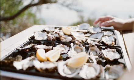 Is Oyster Farming The Ocean Cleanup Solution We've Always Needed?