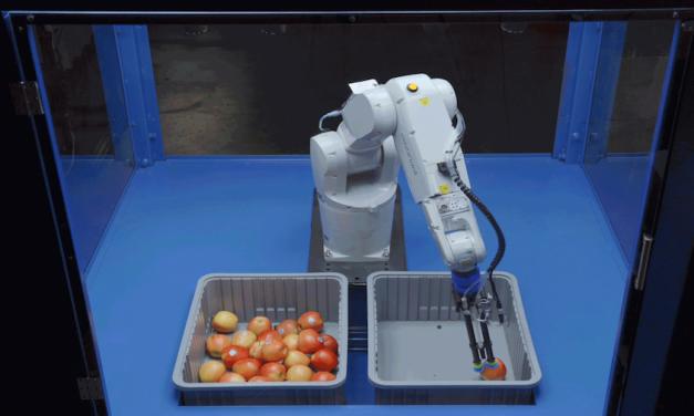 The Next Great AI Company?
