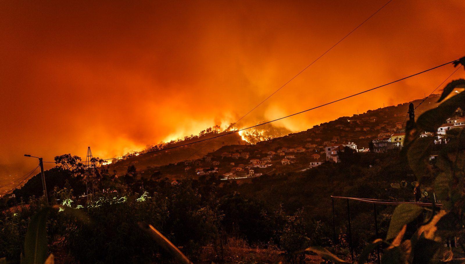 California Fire Season