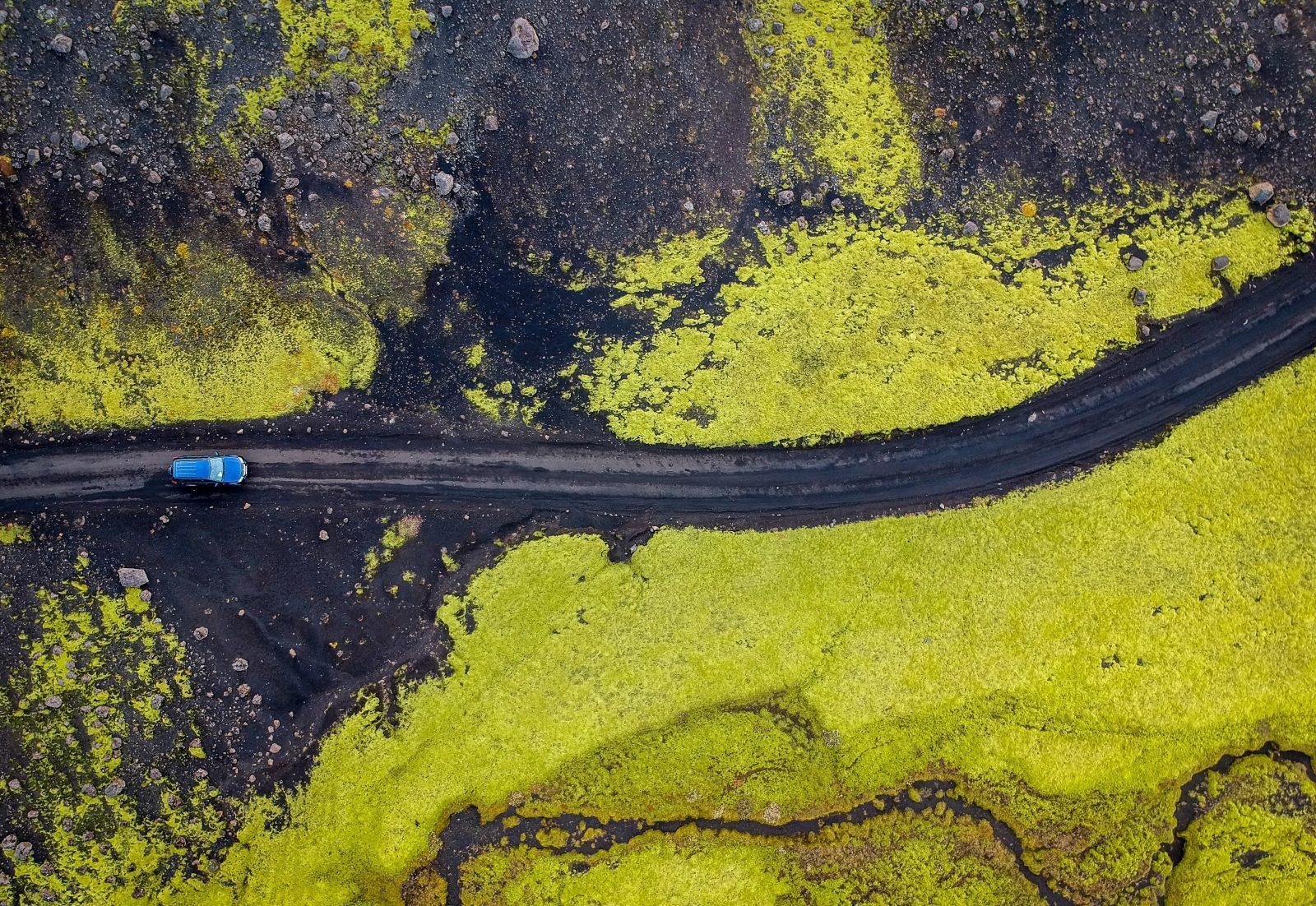 california ban gas cars