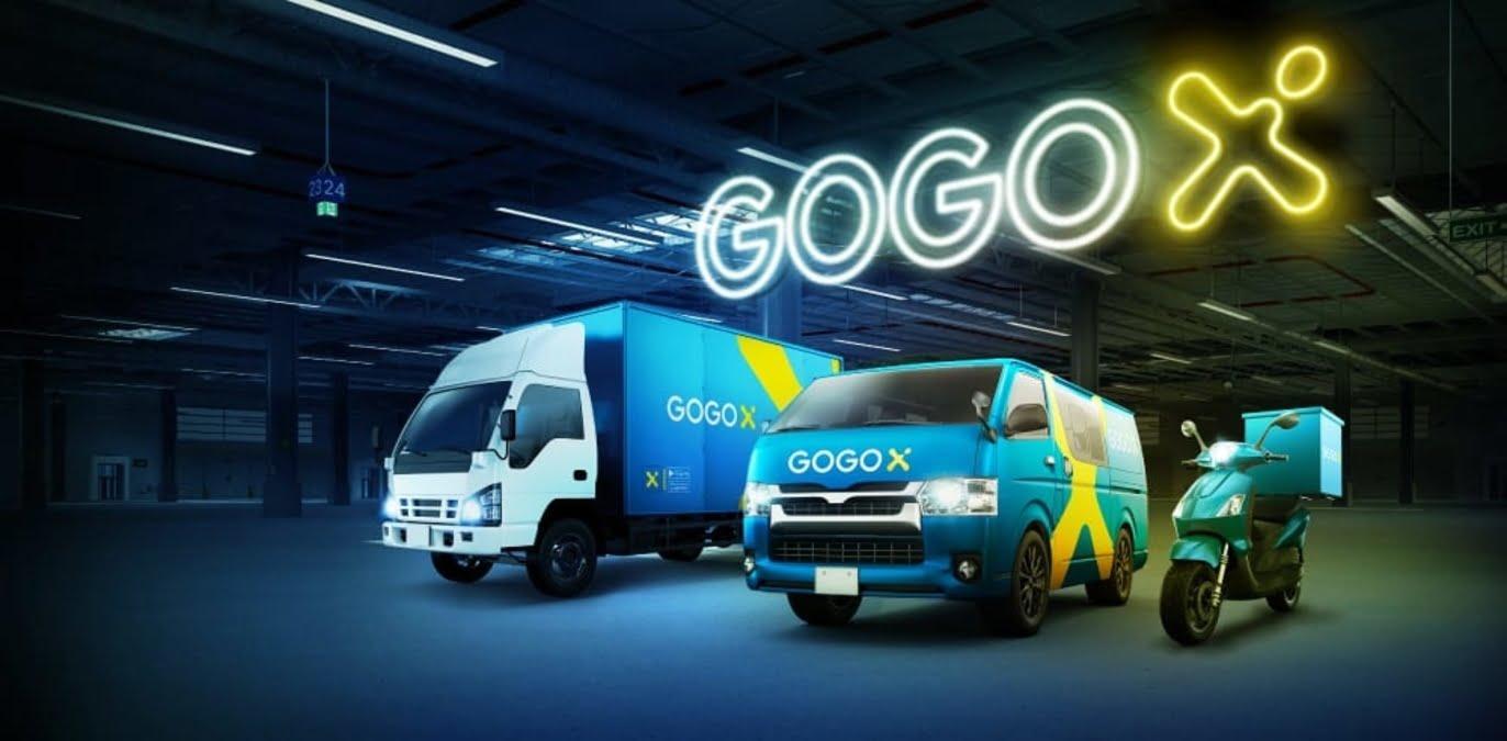 gogox